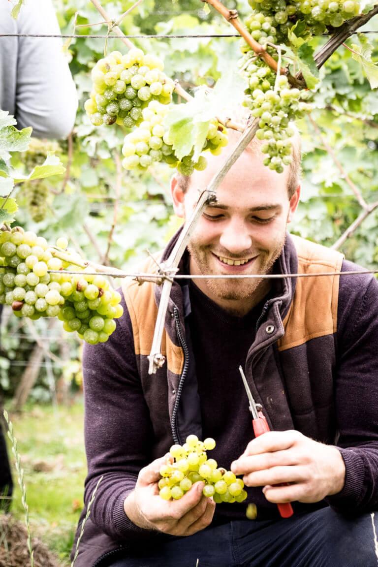 Alexander Grimm, Grape Garage 32a Schweigen Pfalz – Foto von Oliver Semik - Designagentur Yummy Stories
