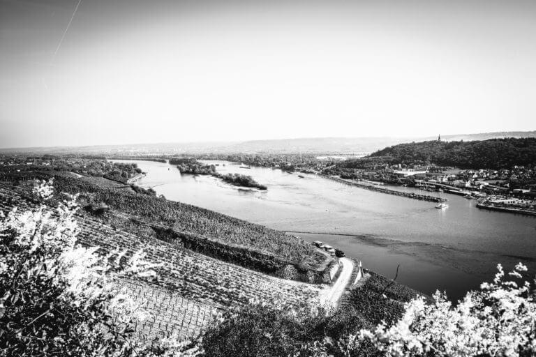 Rüdesheim, Rhein, Rheingau - Renos Weine vom Rhein Rüdesheim– Foto von Oliver Semik - Designagentur Yummy Stories